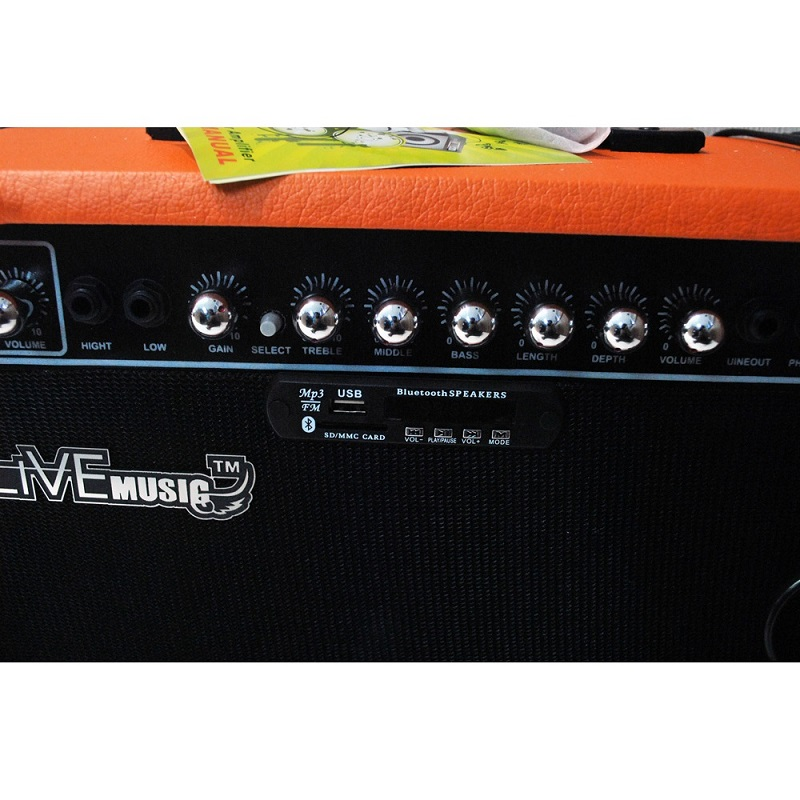Live Music TG-40R Electric Guitar Amplifier Reverberation 3 Port 40W with Music Player & Remote Cont